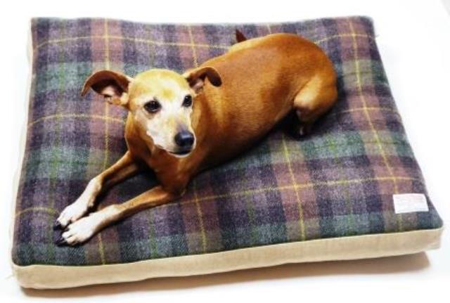Woll-Matratzenbetten für Hunde